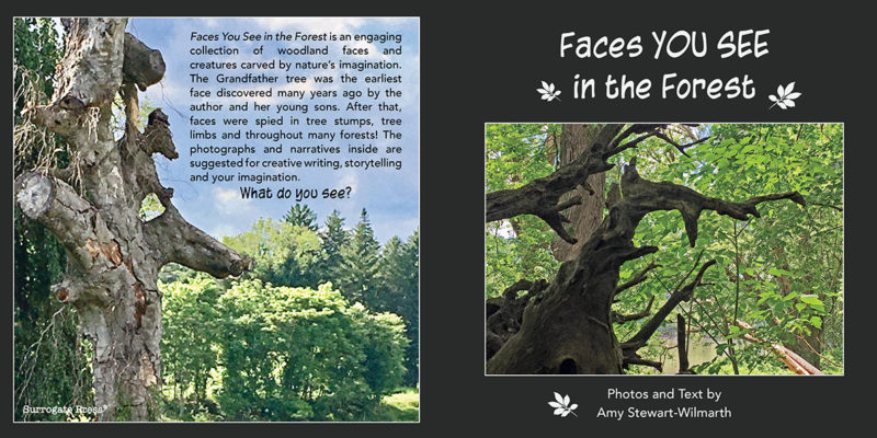 Faces_Forest_Cover-Full